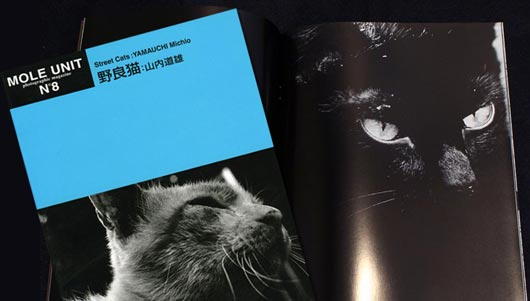 Michio Yamauchi, Street Cats