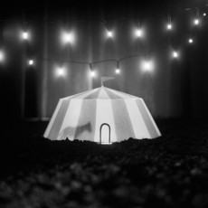 Miyuki Okuyama - Circus