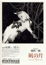 Issei Suda Exhibition: magi no hira - fragments of calm