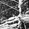 Yu Kusanagi &#8212; from <em>Snow</em>