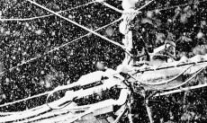 Yu Kusanagi - Snow